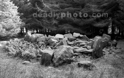 The Wedge Tomb at Ballyedmonduff, Dublin