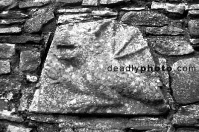 A griffin crest on the wall of the ruined monastery at the hill of Slane