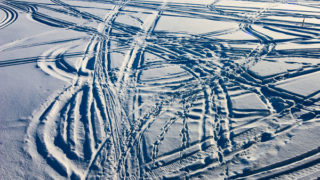 Confusion of Snowmobile tracks.