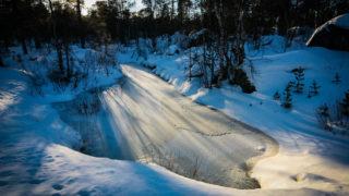 Animal tracks near frozen pond near Inari, Lapland, Finland. © Dave Walsh 2005