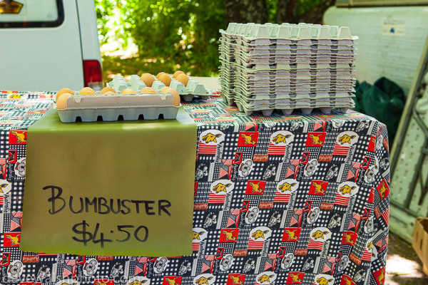 """BBumbuster"" eggs for sale"