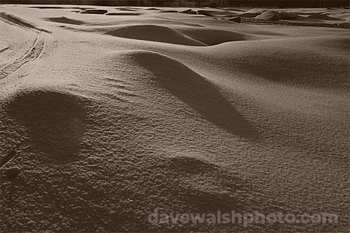 Arctic desert, Lapland, Finland © Dave Walsh 2005