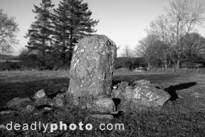 Moneystown Standing Stones. Copyright 2004 Dave Walsh