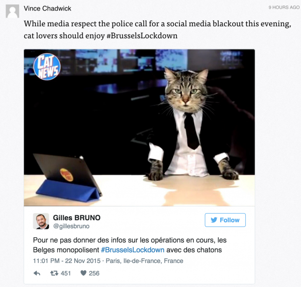 Cat meme Brussels Lockdown