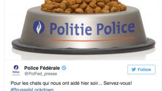 Brussels Lockdown, Federal Police Cat Meme