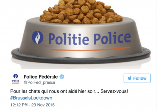 Brussels Lockdown, Federal Police Cat Meme