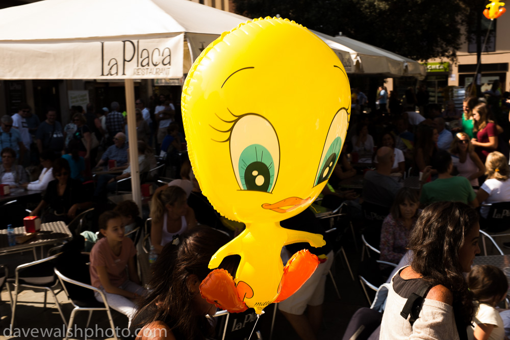 Tweety bird, Piolin, Catalan hero